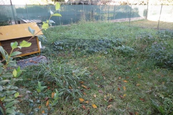 giardino/orto recintato - APPARTAMENTO THIENE (VI)