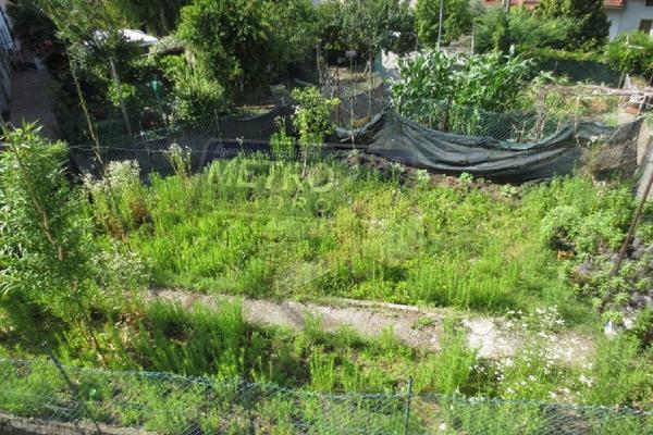 giardino fronte - UNIFAM. AFFIANCATA LUGO DI VICENZA (VI)