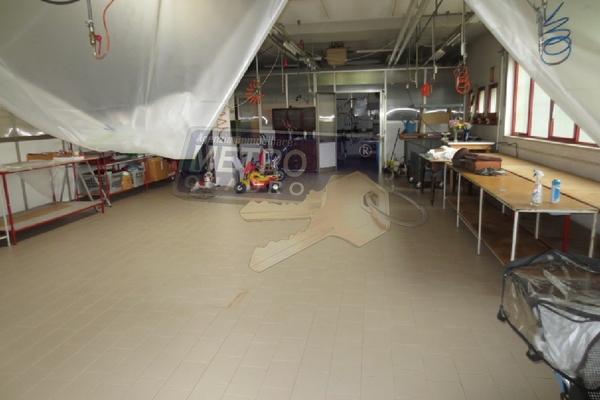 laboratorio 2 - OPIFICIO COGOLLO DEL CENGIO (VI)