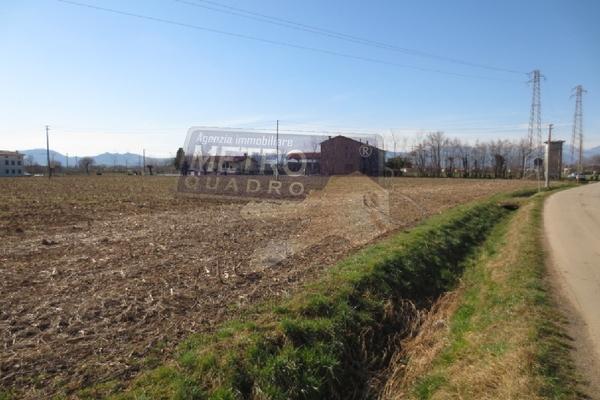 vista 4 - terreno agricolo VILLAVERLA (VI)