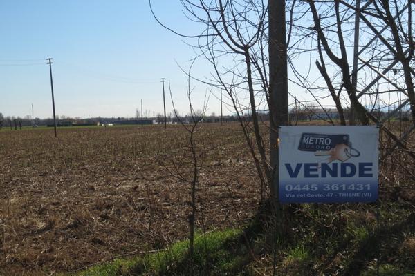 vista 8 - terreno agricolo VILLAVERLA (VI)