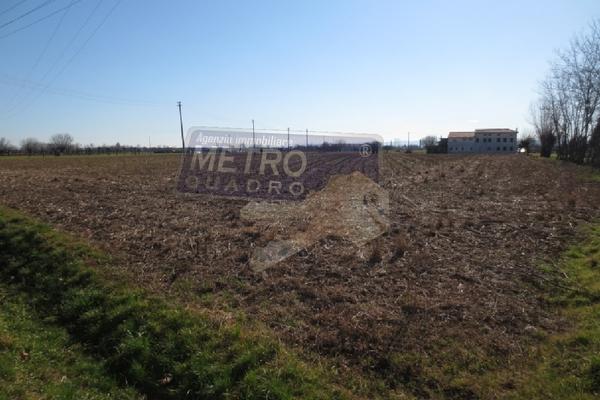vista 2 - terreno agricolo VILLAVERLA (VI)