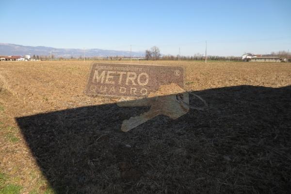 vista 10 - terreno agricolo VILLAVERLA (VI)